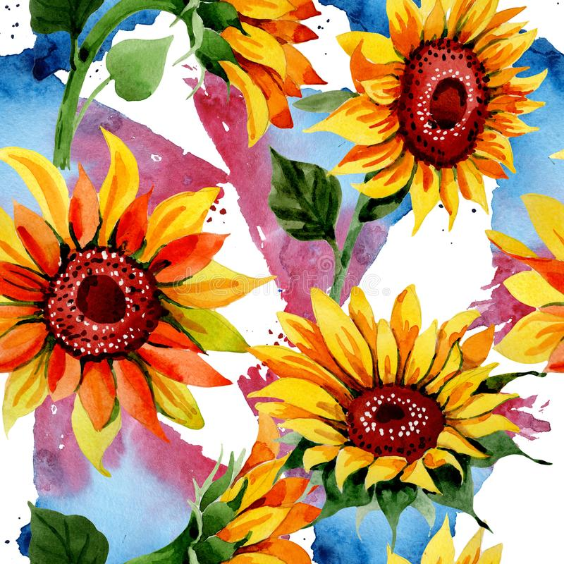 Wildflower sunflower flower pattern in a watercolor style. Full name of the plant: sunflower. Aquarelle wild flower for background, texture, wrapper pattern royalty free illustration