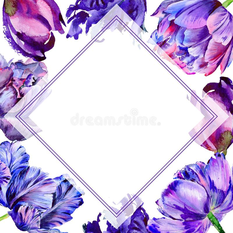 Wildflower tulip flower frame in a watercolor style. Full name of the plant: purple tulip. Aquarelle wild flower for background, texture, wrapper pattern stock illustration