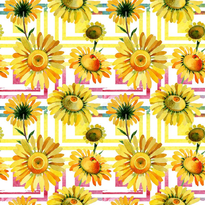Wildflower yellow chamomile flower pattern in a watercolor style. Full name of the plant: yellow chamomile. Aquarelle wild flower for background, texture vector illustration