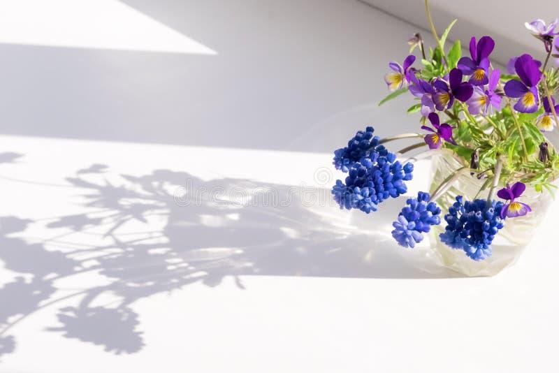 Wildflowers στο παράθυρο Σκιά ήλιων από τα λουλούδια στο windowsill στοκ εικόνες