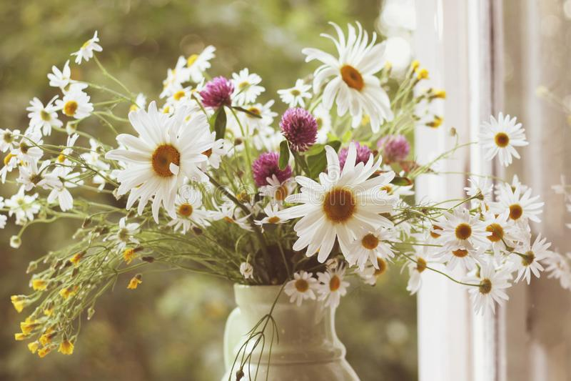 Wildflowers вместе с маргаритками в керамической вазе в винтажном styl стоковые изображения