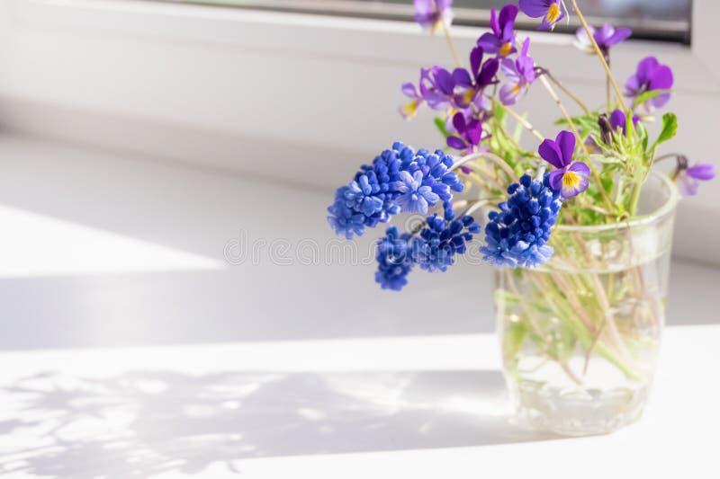 Wildflowers на windowsill Тень от цветков на окнах стоковые фотографии rf