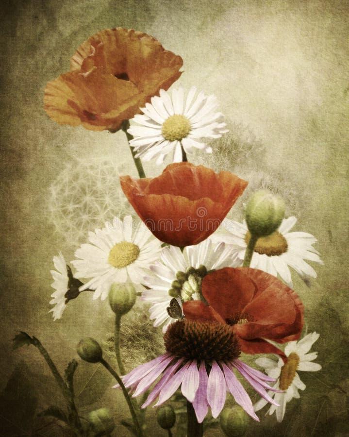 Wildflowers διανυσματική απεικόνιση