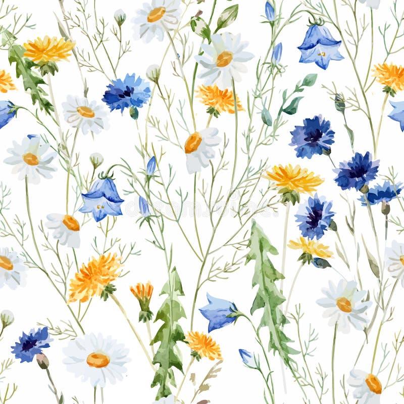 wildflowers illustration stock