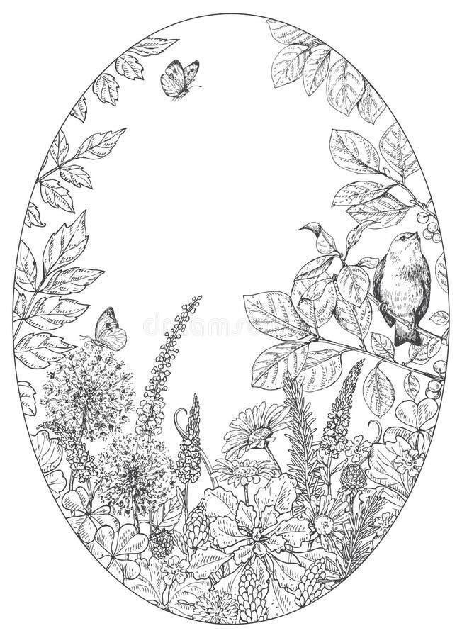 Wildflowers, borboletas e pássaro tirados mão ilustração royalty free