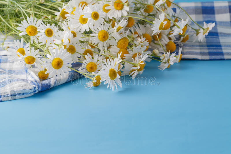 Wildflowers bouquet on blue table at sunset. Evening calm scene royalty free stock photo