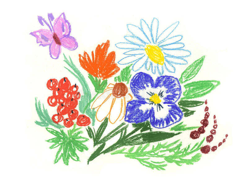 Wildflowers d'été illustration libre de droits