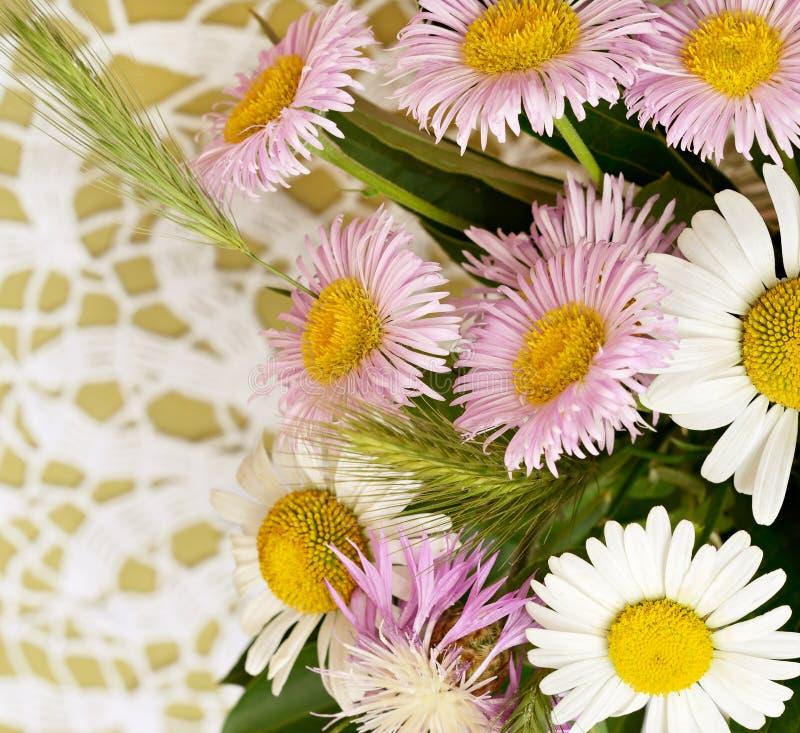 Wildflowers d'été sur le fond de crochet image libre de droits