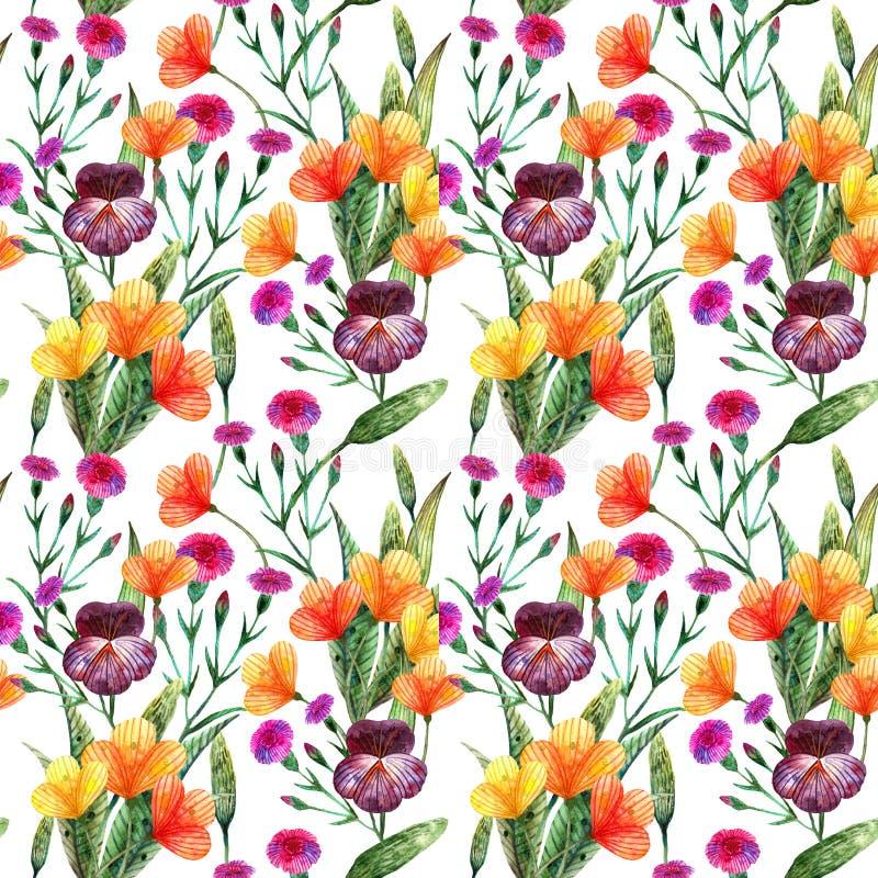 Wildflowers da aquarela Teste padrão sem emenda de uma variedade de flores do prado ilustração stock
