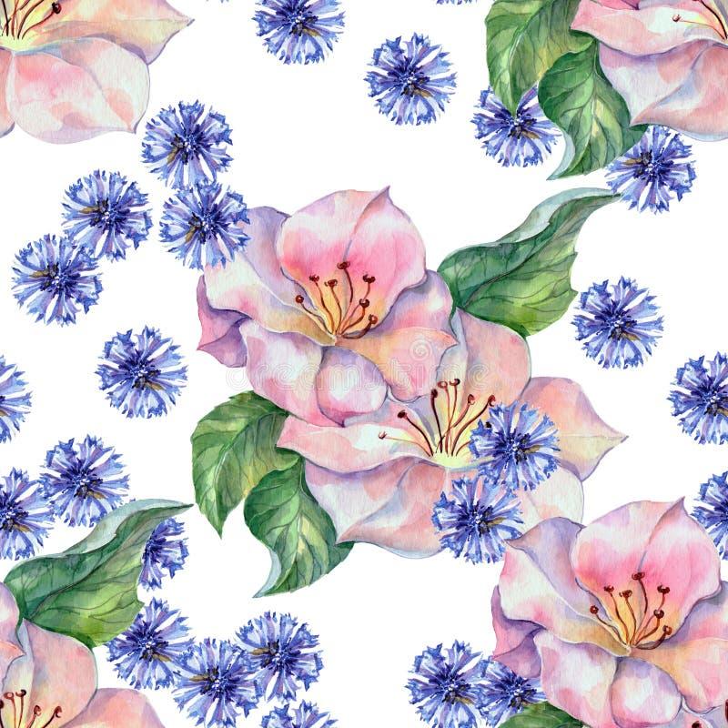 Wildflowers da mola em um teste padrão sem emenda da aquarela branca do fundo ilustração stock