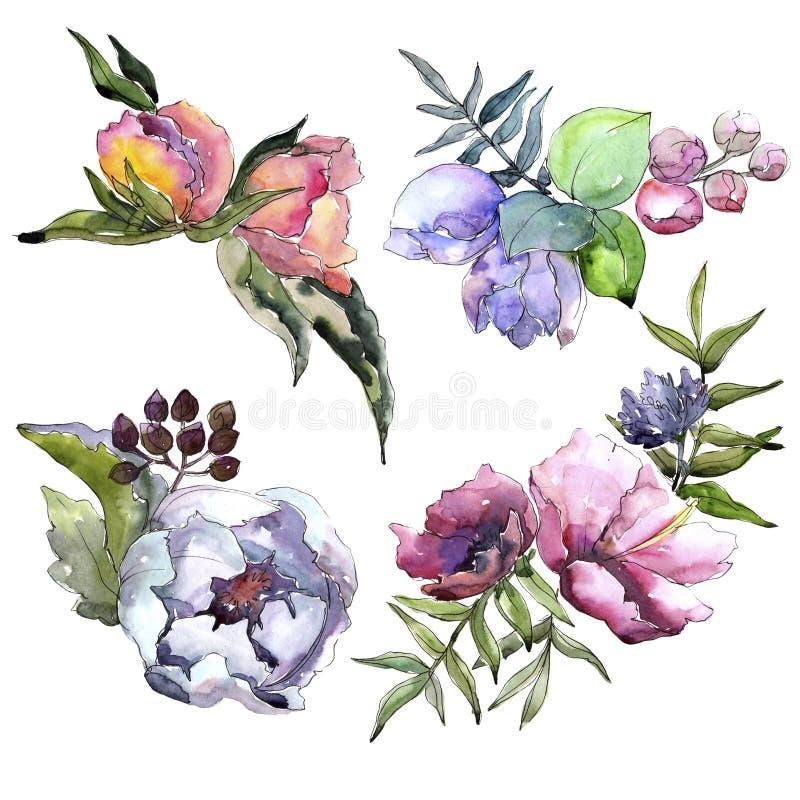 Wildflowers del mazzo in uno stile dell'acquerello isolati illustrazione vettoriale