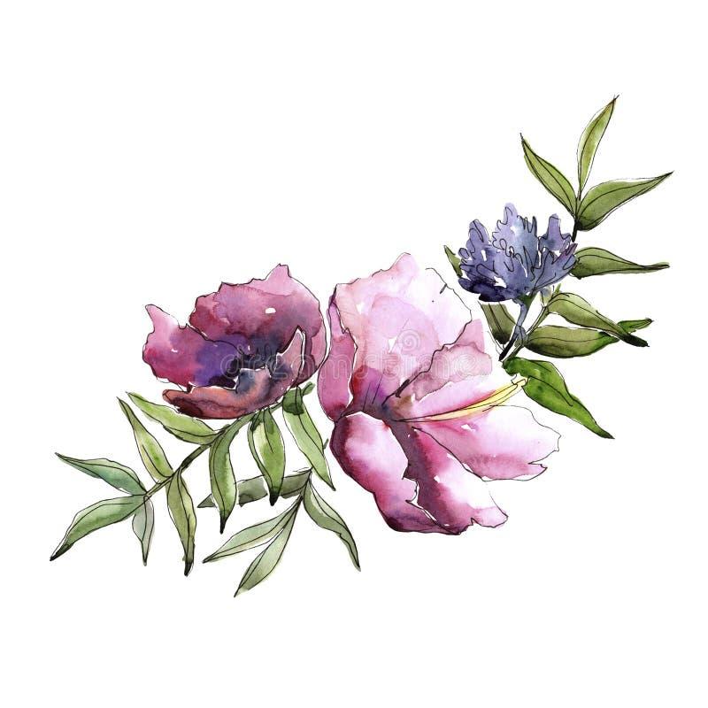Wildflowers del mazzo in uno stile dell'acquerello isolati illustrazione di stock
