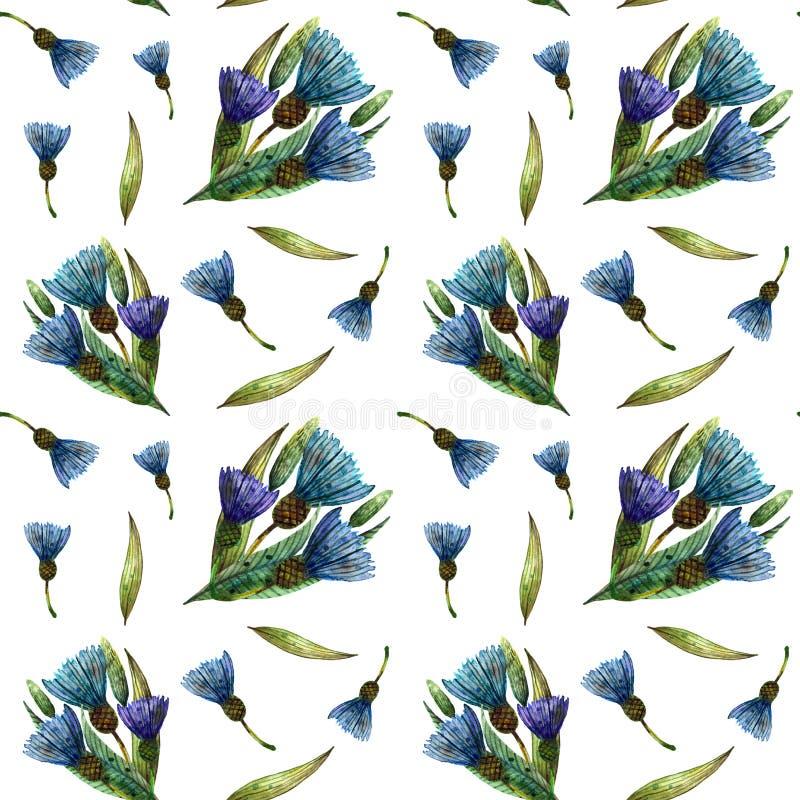 Wildflowers dell'acquerello Modello senza cuciture delicato con i mazzi dei fiordalisi blu royalty illustrazione gratis