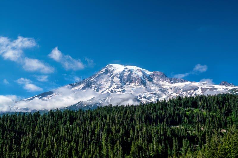 Wildflowers e o Monte Rainier bonitos, estado de Washington fotos de stock