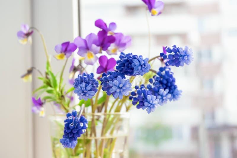 Wildflowers en la ventana Pensamientos y Muscari de las flores en el alf?izar fotos de archivo