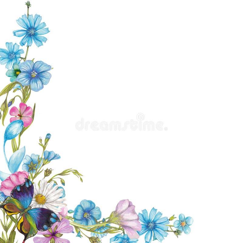 Wildflowers en vlinder vector illustratie