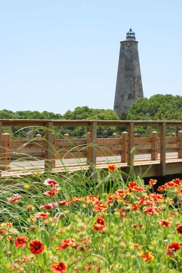 Wildflowers et phare photographie stock
