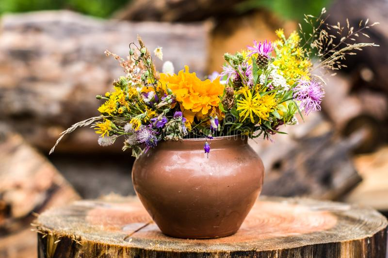 Wildflowers in a flowerpot. Clay pot with flowers royalty free stock photos