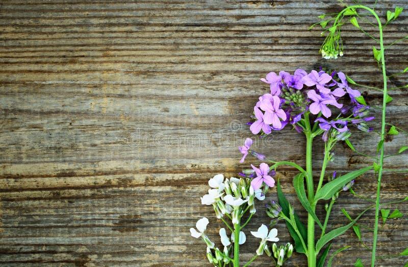 Wildflowers op oud grungehout stock foto's