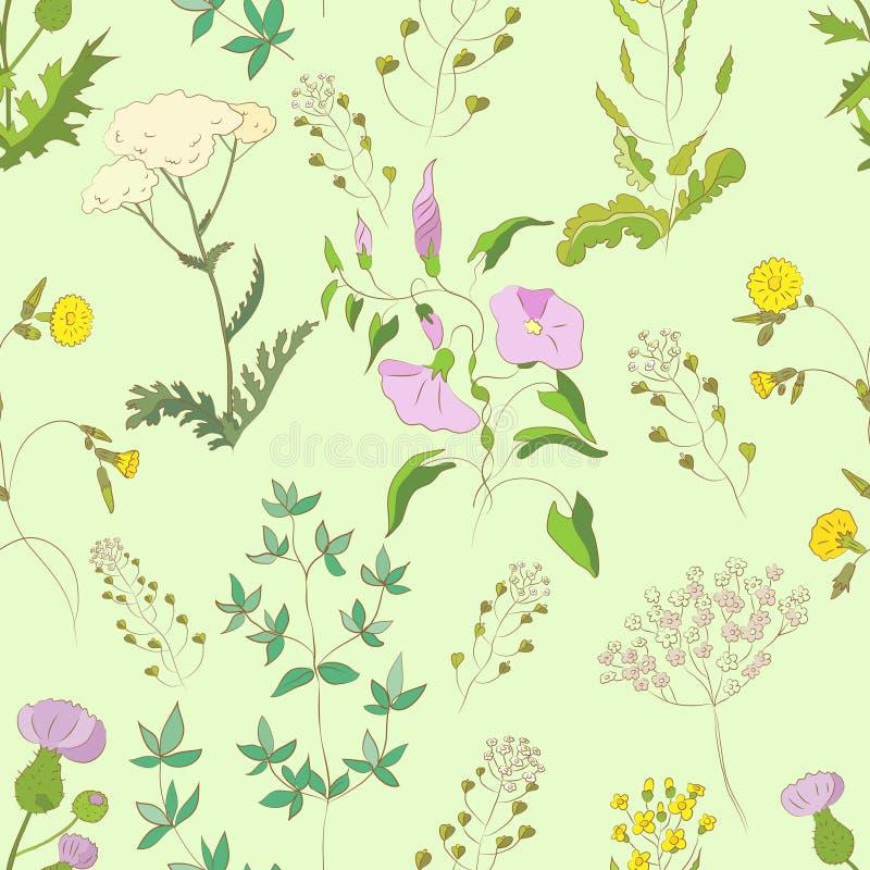 Wildflowers Pattern Stock Vector Illustration Of Various 32989266