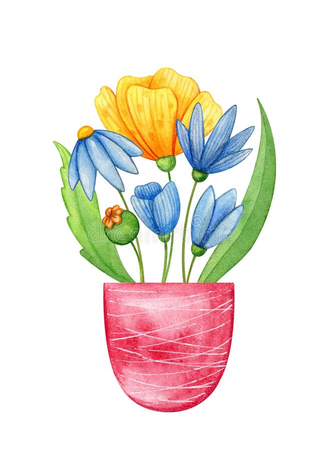 Wildflowers in a pot hand drawn in watercolor. Blue and yellow poppies and green leaves in violet can. stock photography