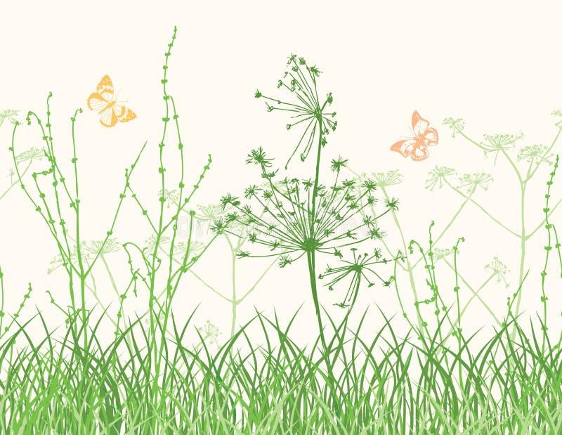 Wildflowers sul prato illustrazione vettoriale