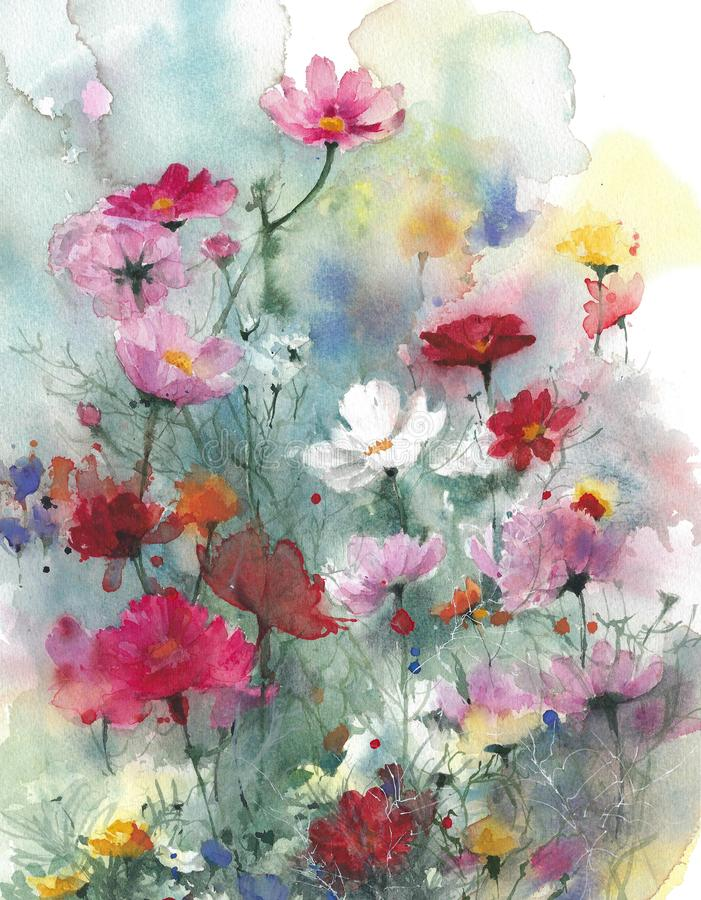 Wildflowers summer colorful flowers watercolor painting illustration isolated on white background. Wildflowers summer colorful flowers watercolor painting stock illustration