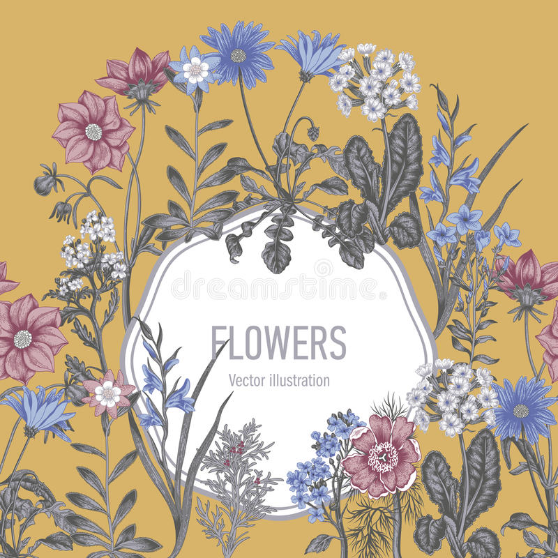 Wildflowers. Vector illustration in vintage style. Festive postcard. royalty free illustration