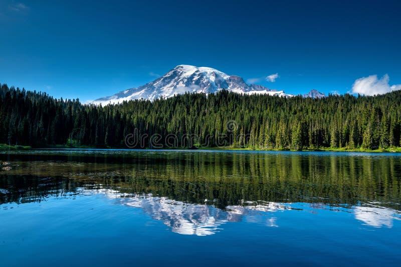 Wildflowers y el Monte Rainier hermosos, estado de Washington fotografía de archivo