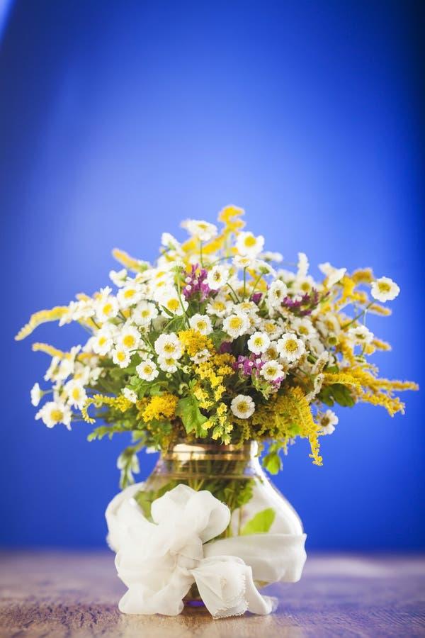 Wildflowersboeket royalty-vrije stock afbeelding