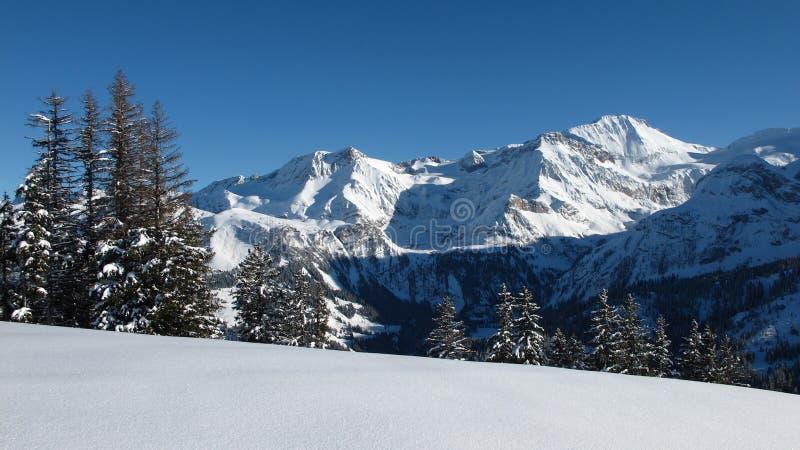 Wildhorn in de winter stock fotografie