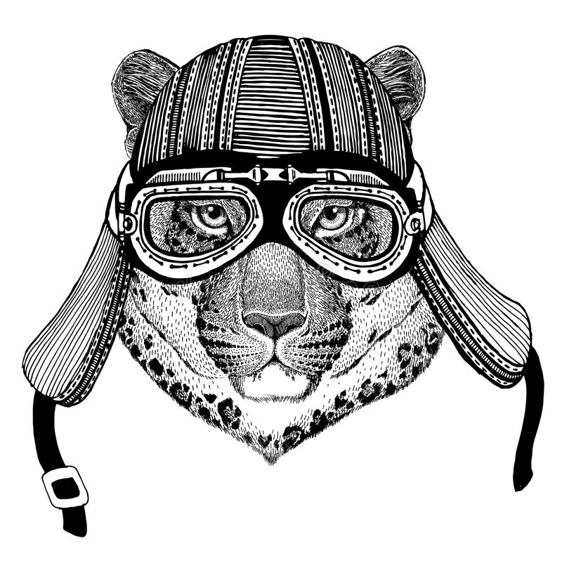Wildkatze-Leopard-Katze-O ` - gezeichnetes Bild des Bergpanthers Hand vom tragenden Motorradtiersturzhelm für T-Shirt, Tätowierun stock abbildung