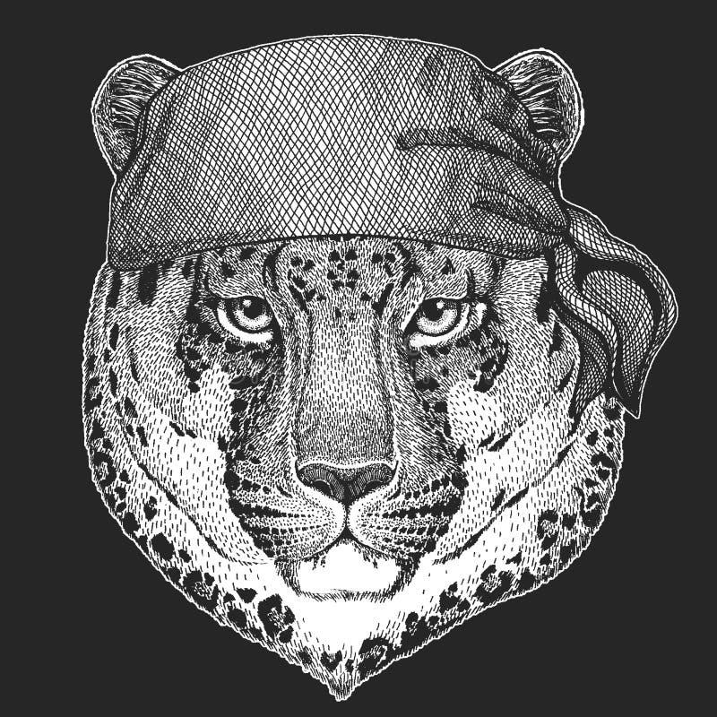 Wildkatze-Leopard-Katze-O ` - kühler Pirat des Bergpanthers, Matrose, seawolf, Seemann, Radfahrertier für Tätowierung, T-Shirt, E stock abbildung