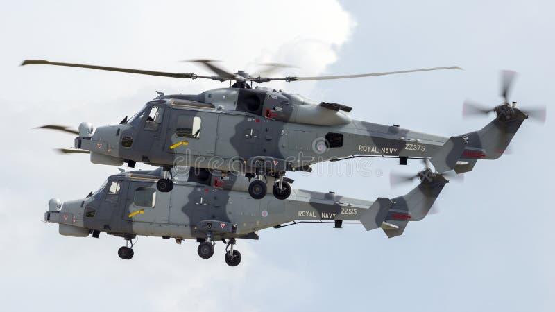 Wildkatzen AgustaWestland AW159 lizenzfreie stockbilder