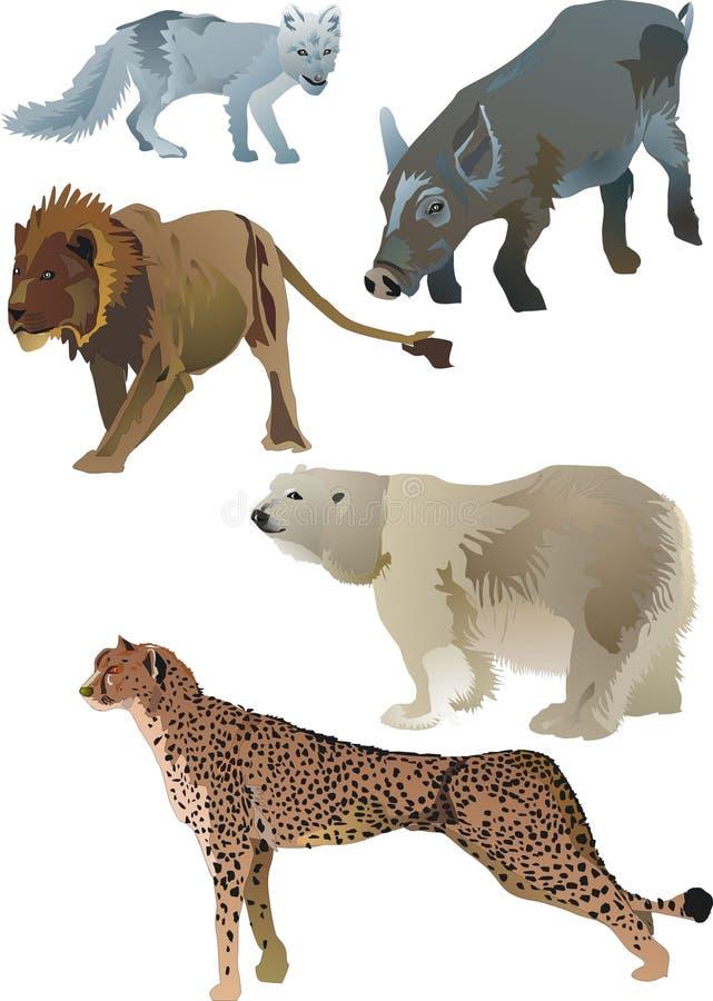 Wildlife animals stock illustration
