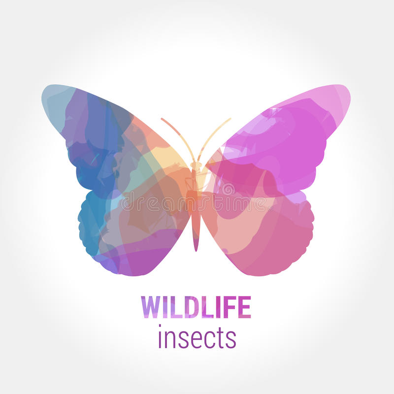 Wildlife banner - insects butterfly stock photos