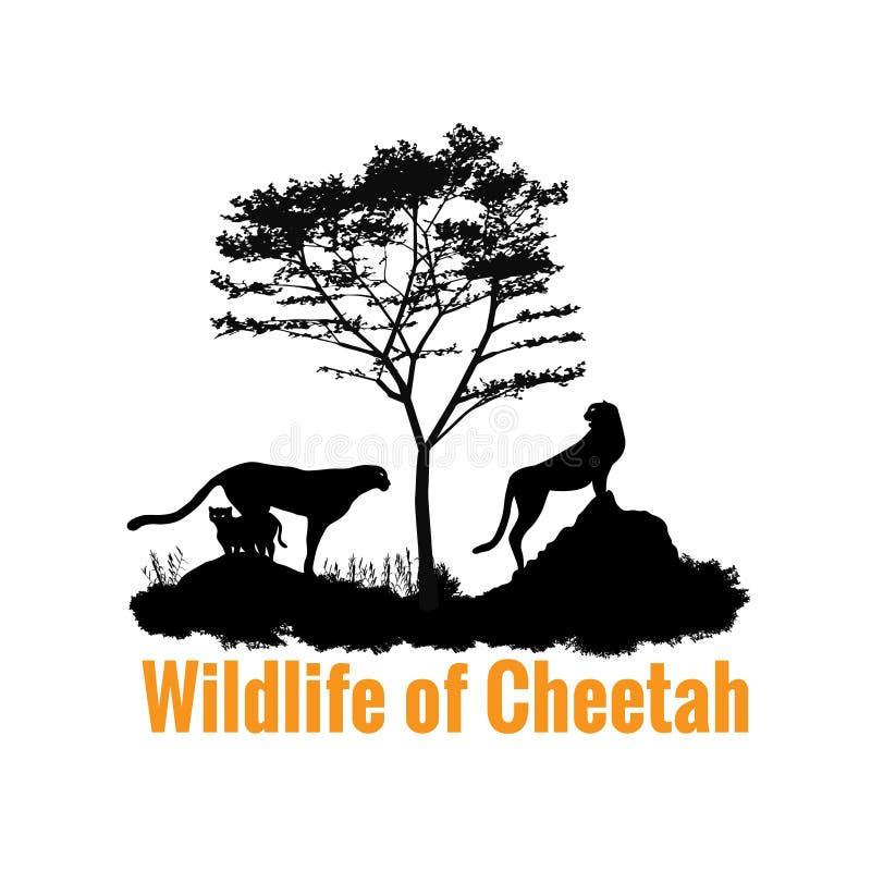 Wildlife of Cheetah black shadow vector design royalty free illustration