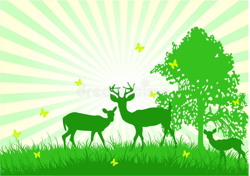 Download Wildlife in the country stock vector. Illustration of backgrounds - 10119447
