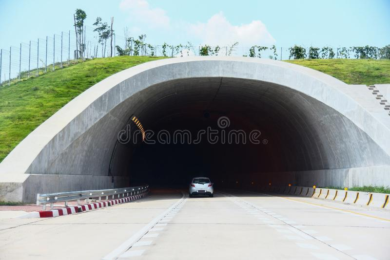 Wildlife crossing over on highway in forest road tunnel traffic car speed on street - Bridge for animals over a highway royalty free stock photography