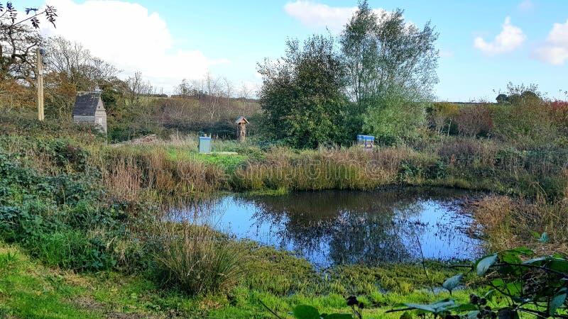 Wildlife Garden pond and bird hide, Cornwall , Uk royalty free stock image