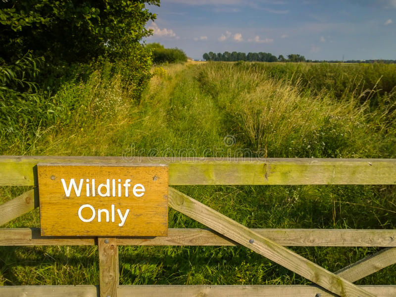Wildlife Only Nature Reserve. Sign saying Wildlife Only on a gate at the entrance to a nature reserve. Wirral, England stock photos