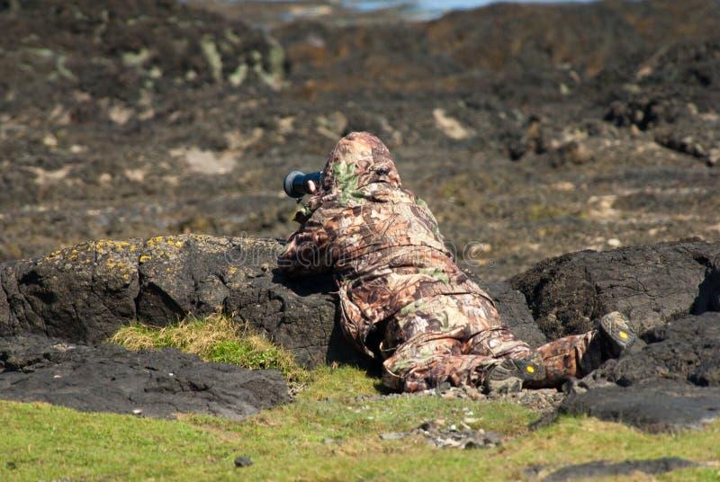 Wildlife Photographer Stock Images