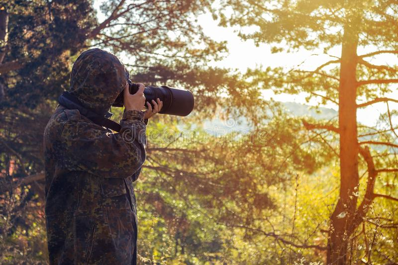 Wildlife professional photographer in the action stock photography