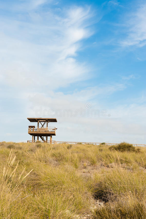 Download Wildlife watchtower stock image. Image of lookout, observation - 19853703