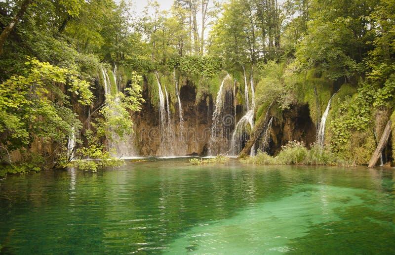 Wildnislandschaft mit schönen Wasserfällen lizenzfreie stockbilder