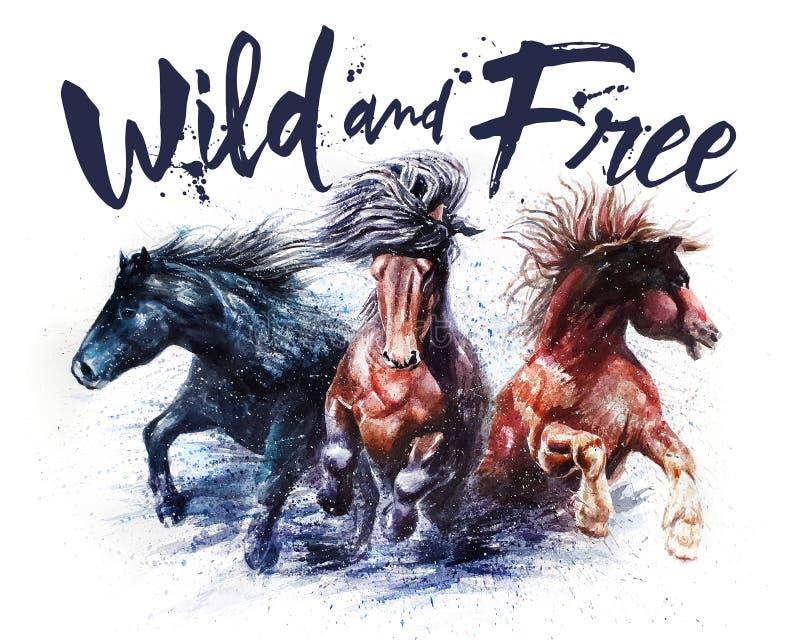 Tätowierte Farbige Reitet Wild
