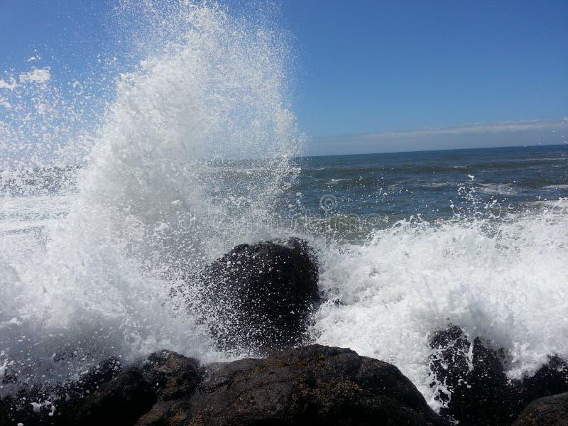 Wildwasser lizenzfreies stockfoto