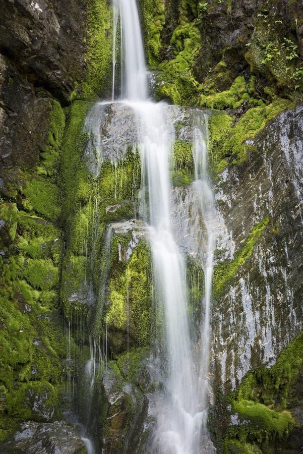 Wildwasser, das über moosige Felsen an Bish-Fällen des heftigen Schlags fällt stockfoto