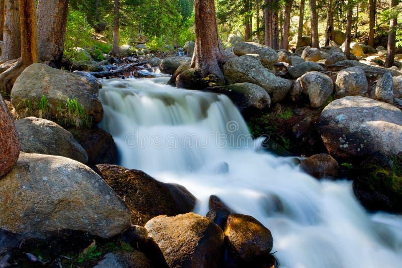 Wildwasser, das durch Flusssteine und über Felsen nahe Berg Mt Evans in Colorado hetzt stockbilder