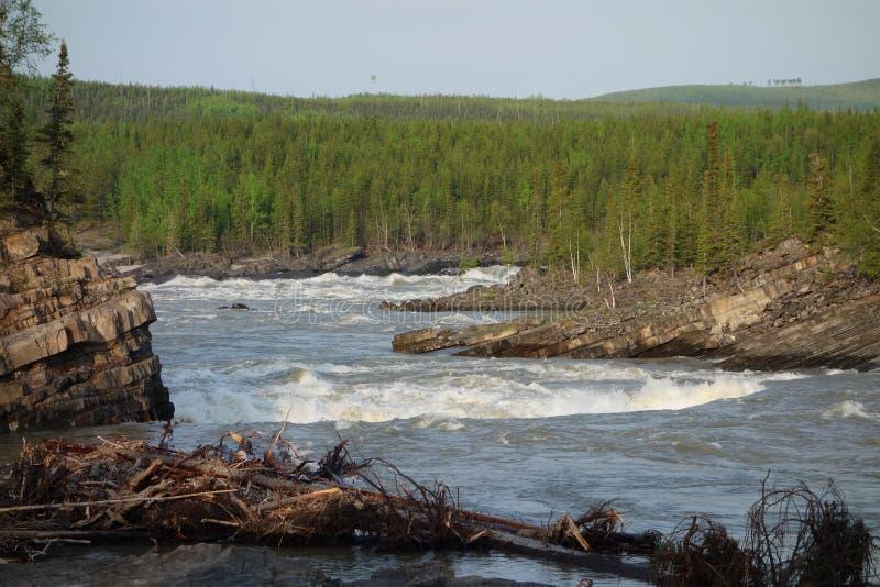 Wildwasserfluß im Frühjahr stockfotos